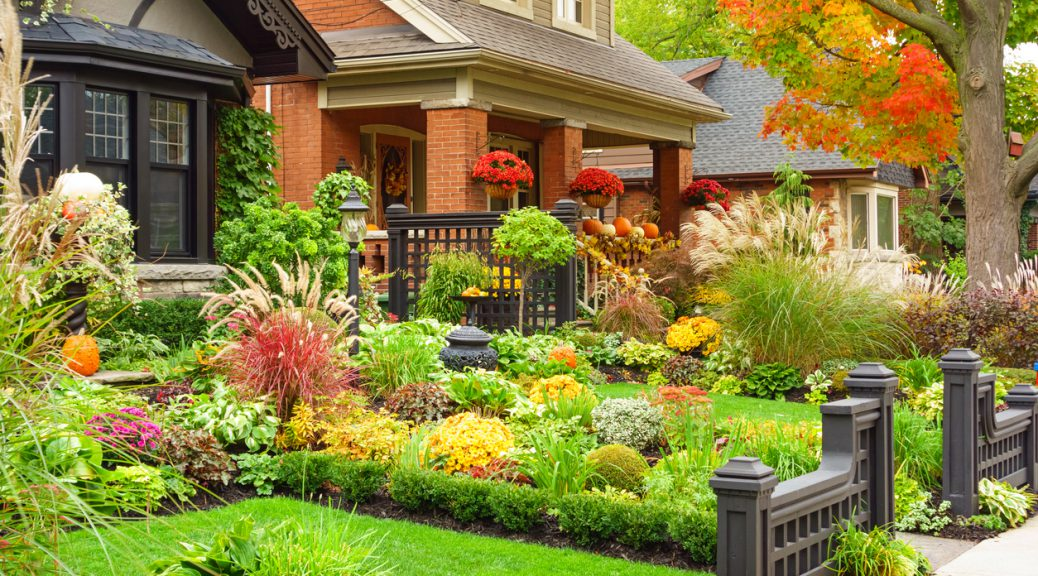 This guide will help you in increasing property value of your home with lawn care and landscaping under legal law and order landscaping.