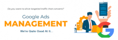 Google Ads & PPC Management