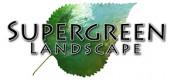 Supergreen Landscape